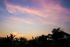 Силуэт дома и дерева в утре Стоковая Фотография RF