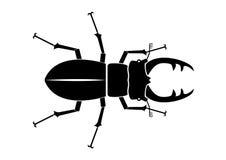 Силуэт оленей жука Стоковые Фото