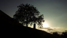 Силуэт памятника рядом с деревом Стоковое Изображение RF