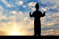 Силуэт Папы против неба вечера Стоковое Изображение RF