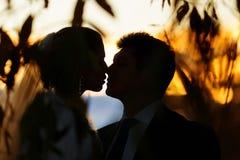 Силуэт пар свадьбы Стоковые Изображения RF
