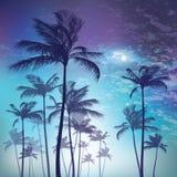 Силуэт пальмы в лунном свете также вектор иллюстрации притяжки corel Стоковые Фотографии RF