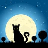 Силуэт против ночного неба луны, EPS10 v черного кота хеллоуина Стоковая Фотография RF