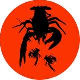 Силуэт раков ярлыка раков, значок раков, знак омара, символ раков Стоковые Изображения RF