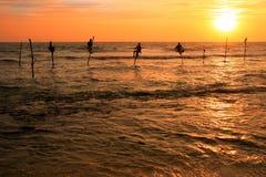 Силуэт рыболовов на заходе солнца, Unawatuna, Шри-Ланке Стоковое фото RF