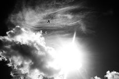 Плоскость Smal на большом небе Стоковые Фото