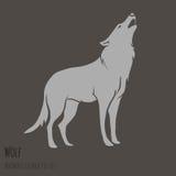 Силуэт серого волка Стоковые Фотографии RF
