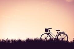 Силуэт старого велосипеда на траве Стоковое Фото