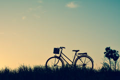 Силуэт старого велосипеда на траве Стоковые Фото