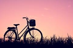 Силуэт старого велосипеда на траве Стоковые Изображения RF