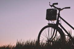 Силуэт старого велосипеда на траве Стоковая Фотография