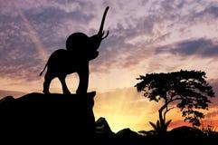 Силуэт слона Стоковое Фото