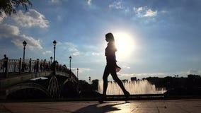 Силуэт тонкой девушки в высоких пятках идя на солнечный обваловку парка Стоковые Фото