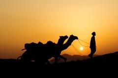Силуэт торговца верблюда пересекая песчанную дюну Стоковые Изображения