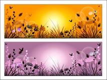 Силуэт травы и цветков луга Стоковая Фотография RF