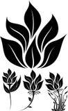 Силуэт цветка Стоковое Изображение
