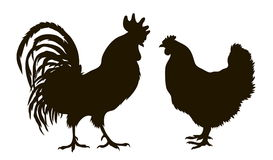 Силуэт цыплят Стоковые Изображения RF
