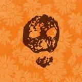 Силуэт черепа Grunge на оранжевой предпосылке сада цветет Стоковое Изображение