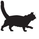 Силуэт черное кот-больного Стоковые Фотографии RF