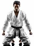 Силуэт человека бойца Judoka Стоковое Изображение RF