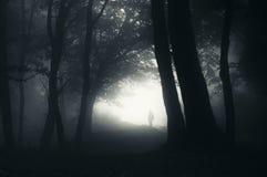 Силуэт человека в загадочном лесе с туманом Стоковые Изображения RF