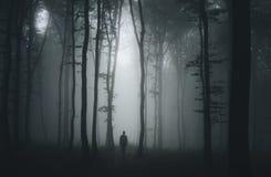 Силуэт человека в темноте преследовал страшный лес на ноче хеллоуина Стоковое Фото