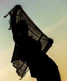 Силуэт человека держа пропуская шарф наверху стоковая фотография