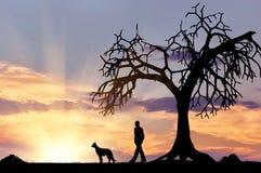 Силуэт человека идя с собакой Стоковые Фотографии RF