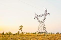 Силуэт электрического кабеля Стоковое Фото