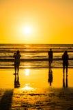 Силуэт людей на пляже Стоковое Фото