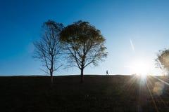 Силуэт людей на холме Стоковое Изображение RF