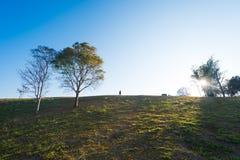 Силуэт людей на холме Стоковое Изображение