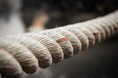 Сильная веревочка Стоковые Фото