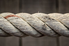 Сильная веревочка Стоковое Изображение RF
