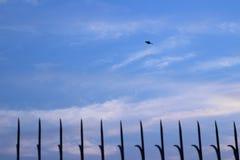 Сильная железная загородка с небом как предпосылка Стоковые Фотографии RF