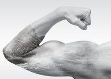 Сильная мужская рука показывает бицепс с прибрежным ландшафтом моря стоковые изображения rf