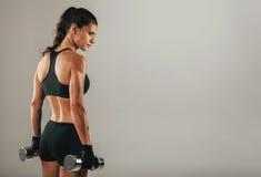 Сильная мышечная молодая женщина держа гантели Стоковая Фотография RF
