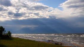 Сильный ветер Стоковые Фото