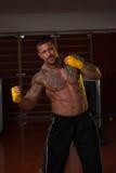 Сильный мышечный смешанный боец боевых искусств Стоковое Фото