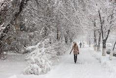 Сильный снегопад в Киеве, Украине, 5-ое февраля 2015 Стоковое Изображение RF