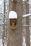 Сильный снегопад на birdhouse установленном к дереву стоковая фотография rf