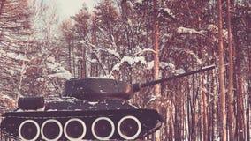 Сказание войны в лесе Стоковые Фото