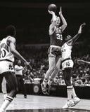 Сказание Celtics Бостона птицы Ларри стоковое изображение rf