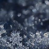 Сказка рождества Стоковые Фото