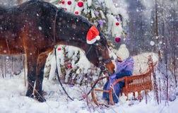 Сказка рождества Стоковое Изображение