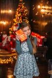 Сказка рождества Стоковые Фотографии RF