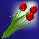 сказовые тюльпаны иллюстрация вектора