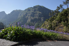 Сказовый горный вид в Мадейре Стоковое Изображение