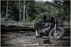 Сказочная езда Стоковая Фотография