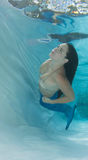 Сказ бикини и русалки раковины женщины нося Стоковое Изображение RF